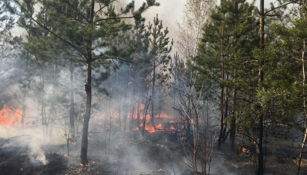 У Росії горить 170 тисяч гектарів лісу