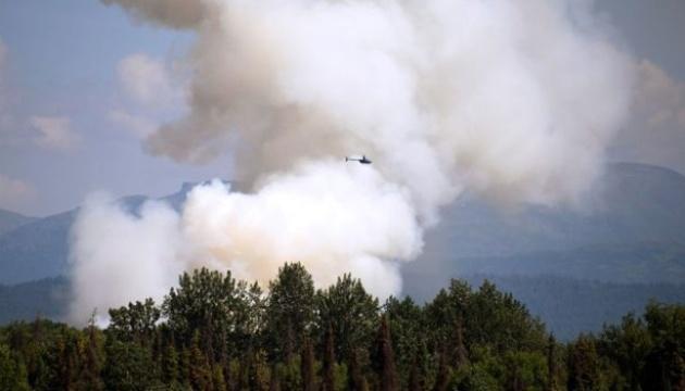 На Алясці через небувалу спеку гинуть птахи і горять ліси