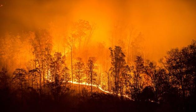 Дим від пожеж у Сибіру вже досяг Монголії. ВІДЕО