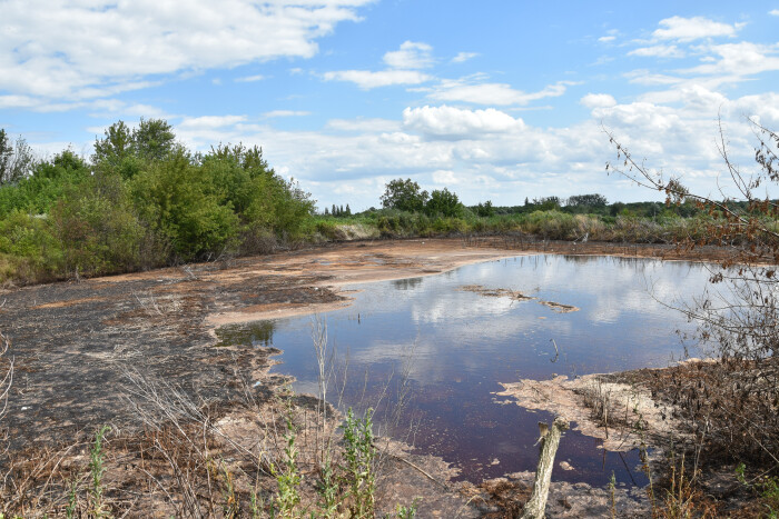 Мулові майданчики на полях фільтрації Гнідавського цукрового заводу знезаражують за допомогою мікроорганізмів