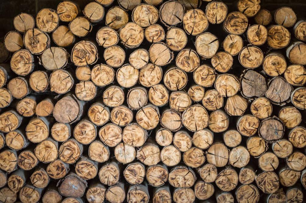 Лучанам безкоштовно дадуть дрова