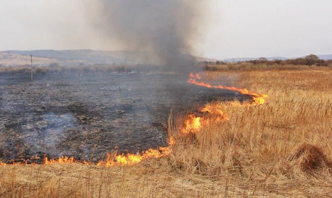 На Волині психічнохворий чоловік підпалив суху траву