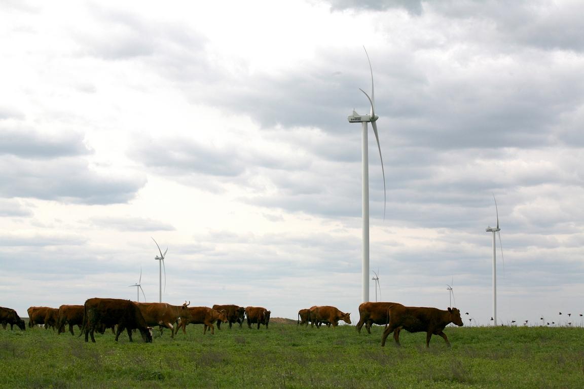 Економія води, скорочення парникових газів та запобігання передчасним смертям – енергія вітру стає реальною конкуренткою викопної енергетики
