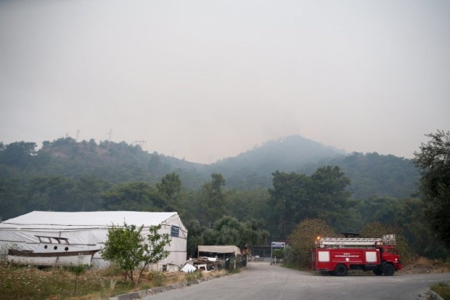 У Туреччині вогонь знищив 350 гектарів лісу. ФОТО