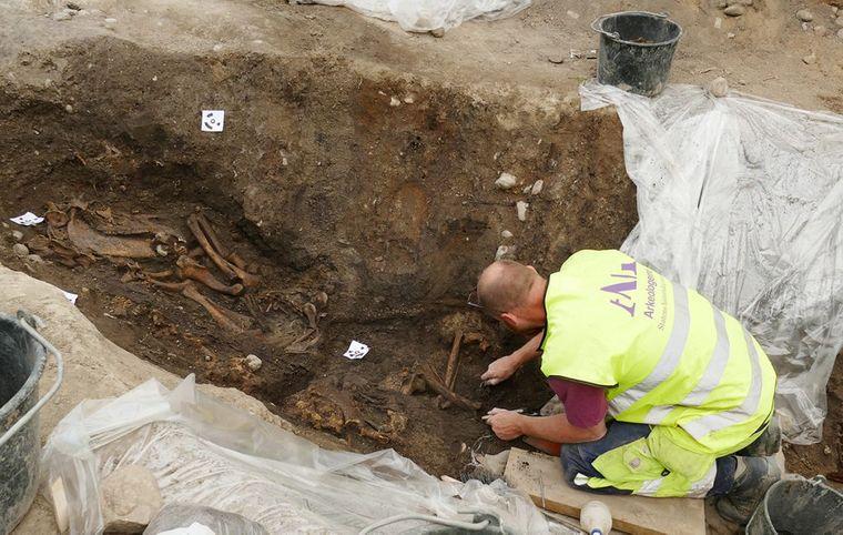 У Швеції археологи відкопали вікінга з собакою, конем і кораблем