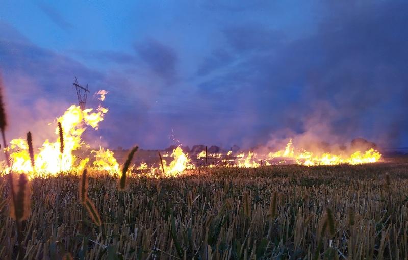 На Волині виявили порушників правил пожежної безпеки