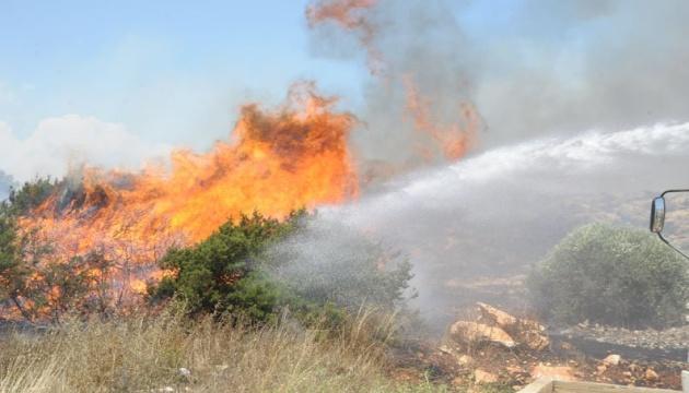 На Кіпрі дві лісові пожежі вийшли з-під контролю