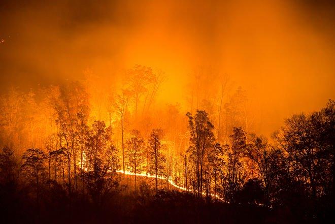 Дим від пожеж у Сибіру дістався до Америки
