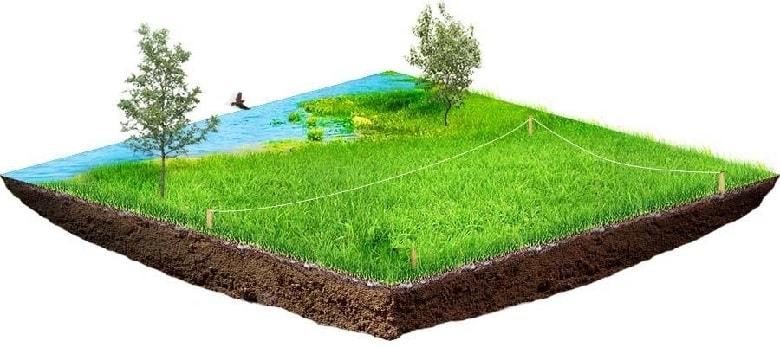 Волинське підприємство просять звільнити самовільно зайняту земельну ділянку