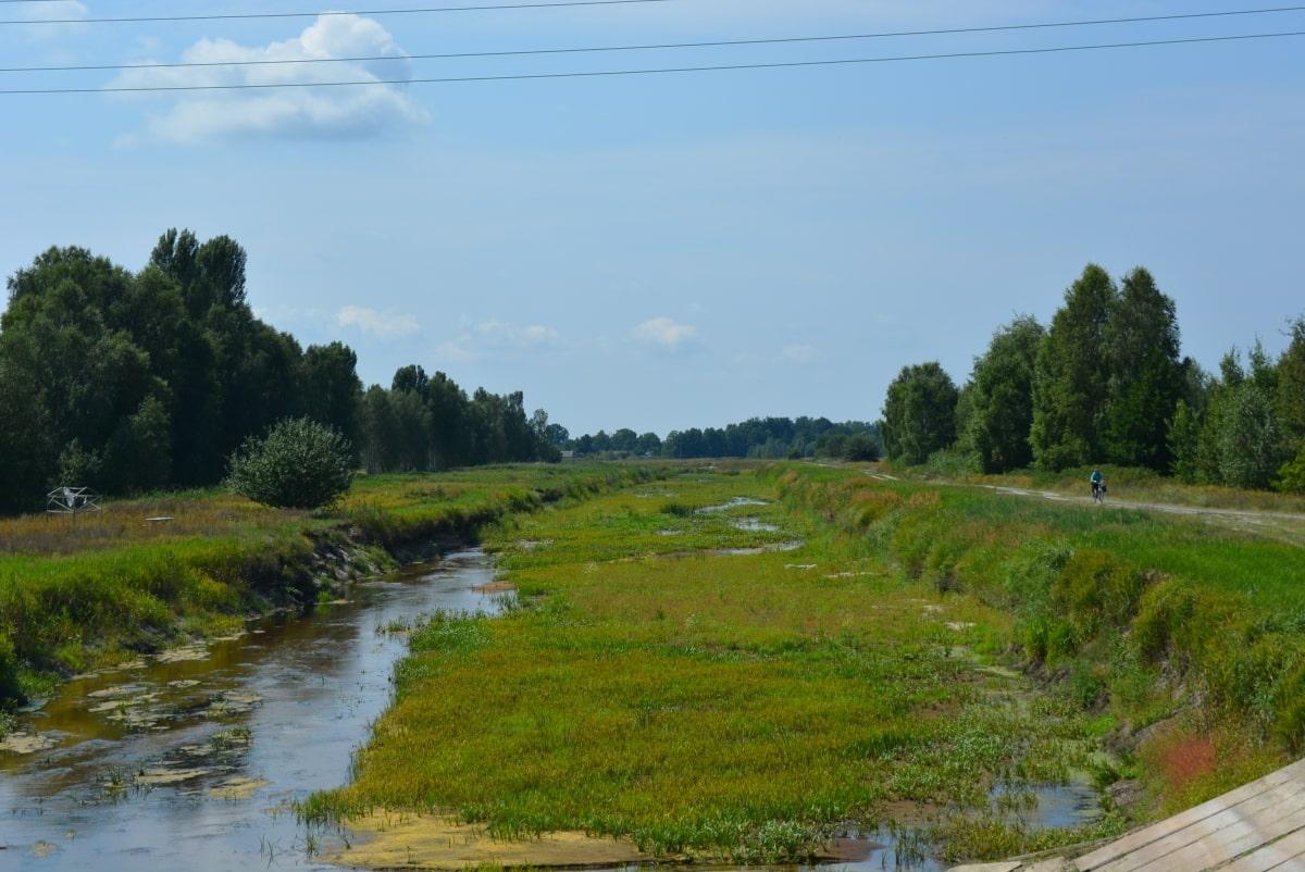 На Волині річка перетворилася на болото. ФОТО
