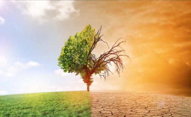 Глава ООН оголосив «надзвичайну кліматичну ситуацію»