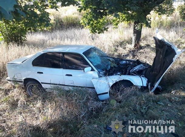 На Волині автомобіль врізався в дерево. ФОТО