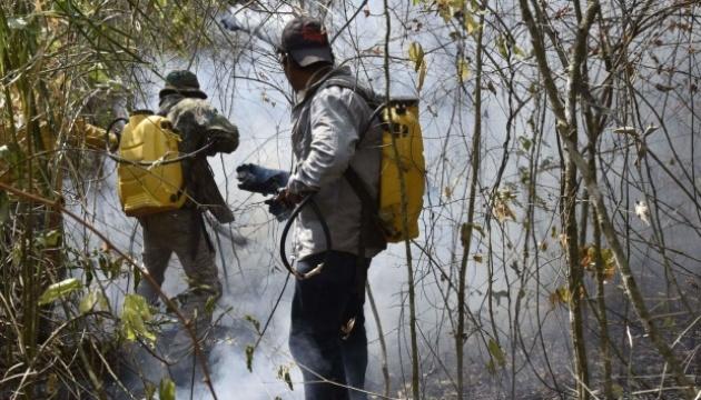 Пожежі у Болівії знищили майже два мільйони гектарів лісу