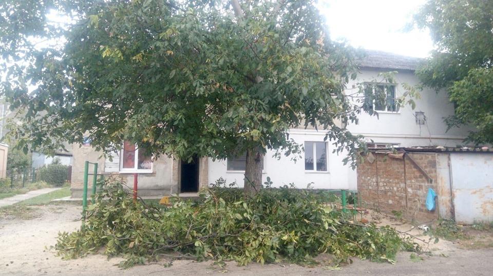 У Луцьку гіллям дерев завалили дитячий майданчик