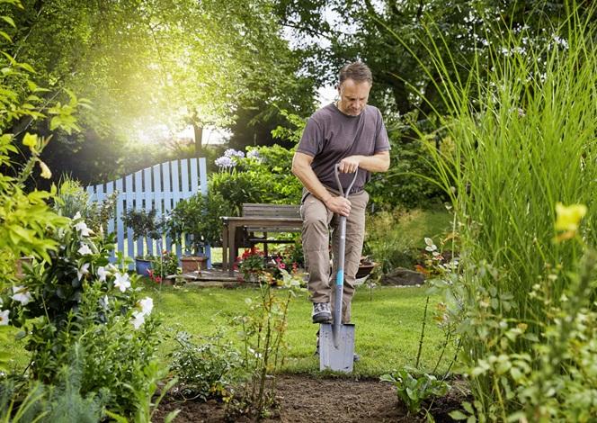 Де волинянам придбати набір садових інструментів*