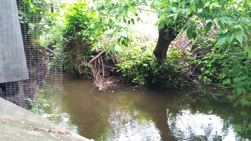 На Волині скидають нечистоти в річку