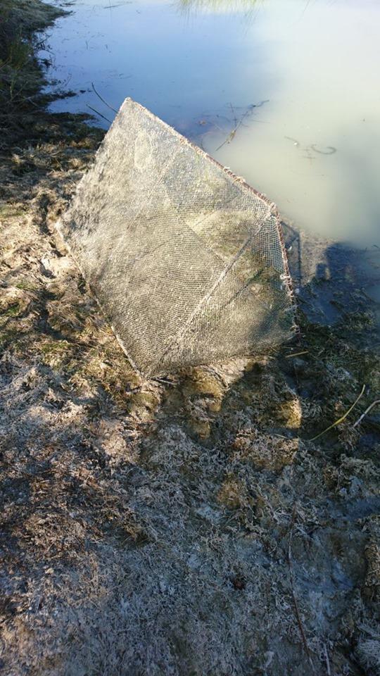 На Волині затримали порушників правил риболовлі