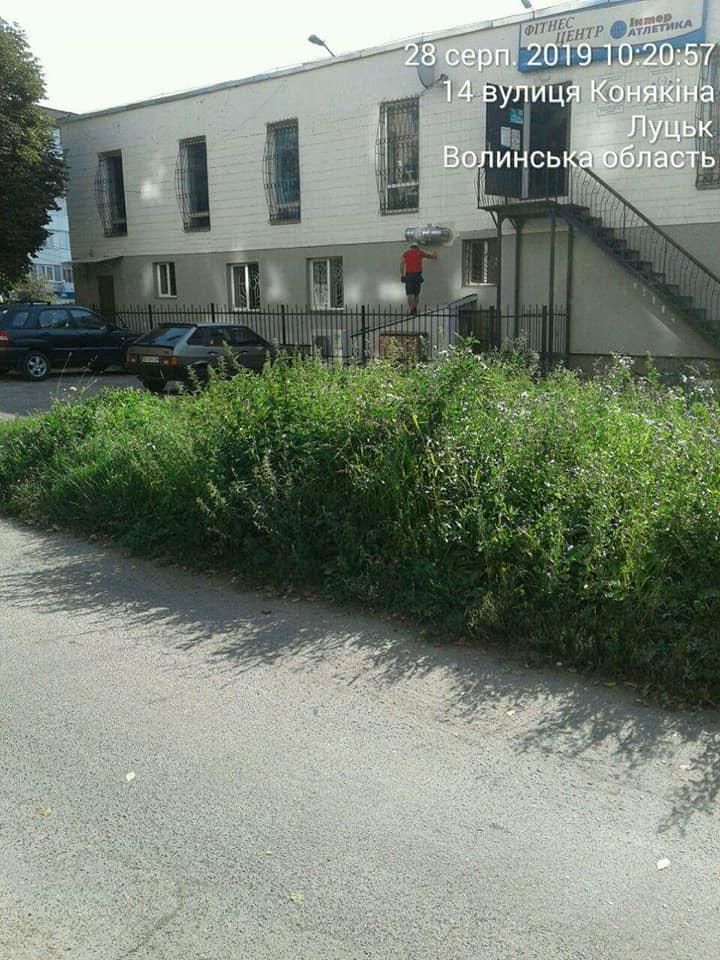 У Луцьку зобов'язали скосити високу траву біля під'їздів