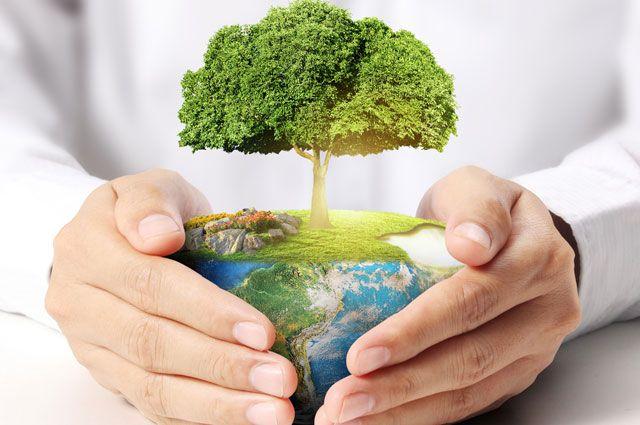 У Луцьку відбудуться екологічні заходи на підтримку всеукраїнської акції