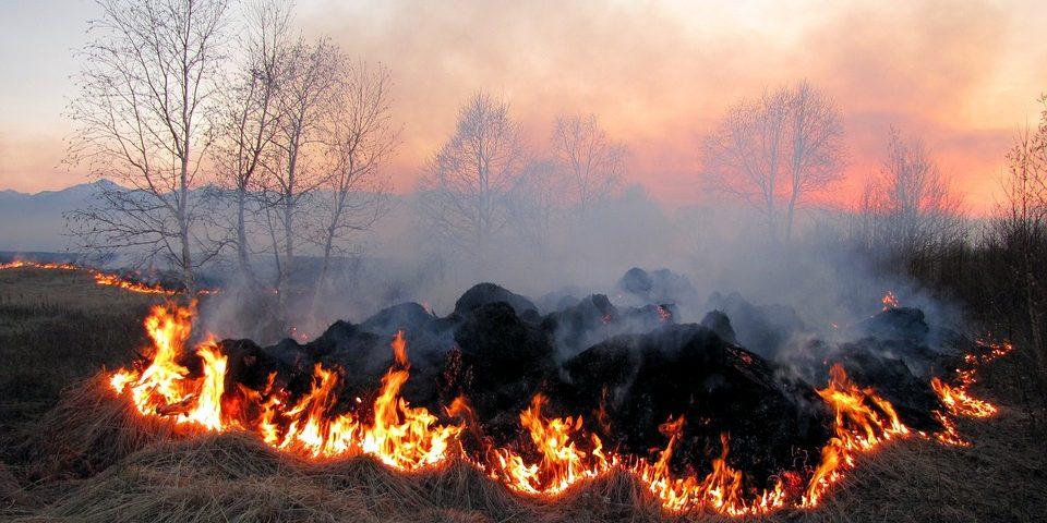 На Волині надзвичайна пожежна небезпека