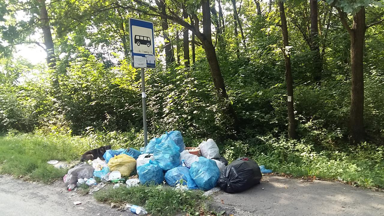 У селі на Волині зупинку закидали сміттям. ФОТО