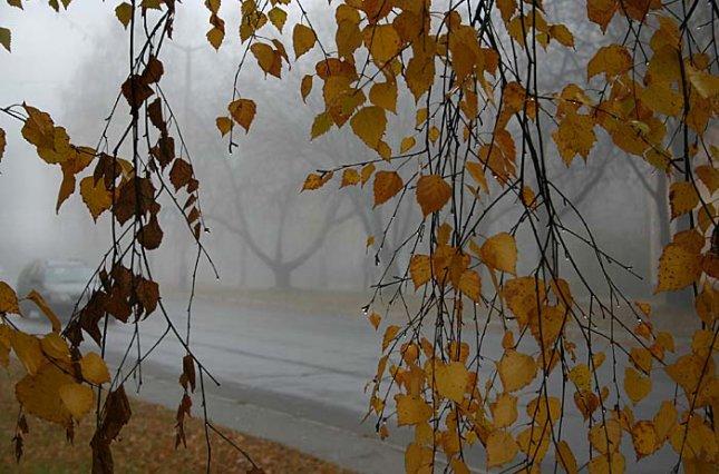 Погода у Луцьку завтра, 21 вересня