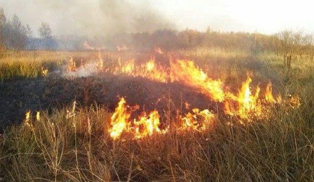 В Україні зберігається надзвичайний рівень пожежної небезпеки
