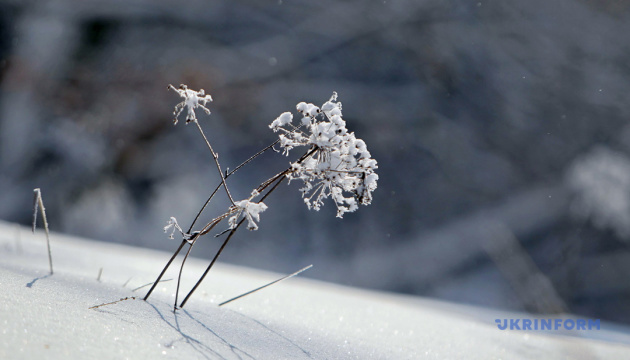 Рятувальники просять не ходити в гори через те, що в Карпатах випав сніг. ФОТО. ВІДЕО
