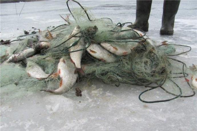 На Волині розпочався місячник добровільної здачі заборонених знарядь вилову риби