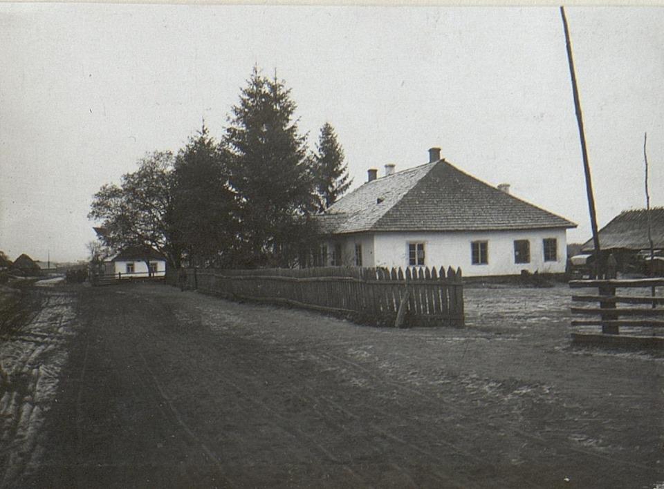 Волинянам показали, як виглядало одне із сіл на Волині понад 100 років тому. ФОТО