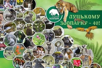 У зоопарку Луцька відбудеться свято гарбуза
