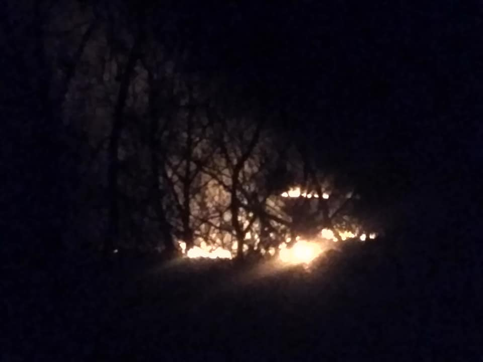 Поблизу селища на Волині горить очерет. ВІДЕО