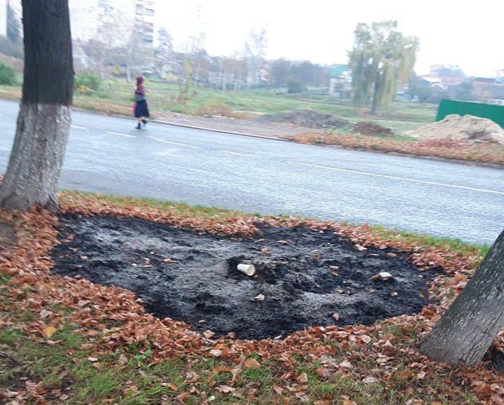 У місті на Волині невідомі спалювали листя посеред вулиці. ФОТО