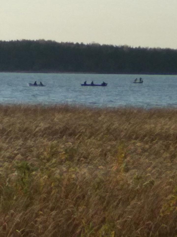 Директора департаменту Луцькради шукають дев'ять водолазів, літак та місцеві мешканці на човнах
