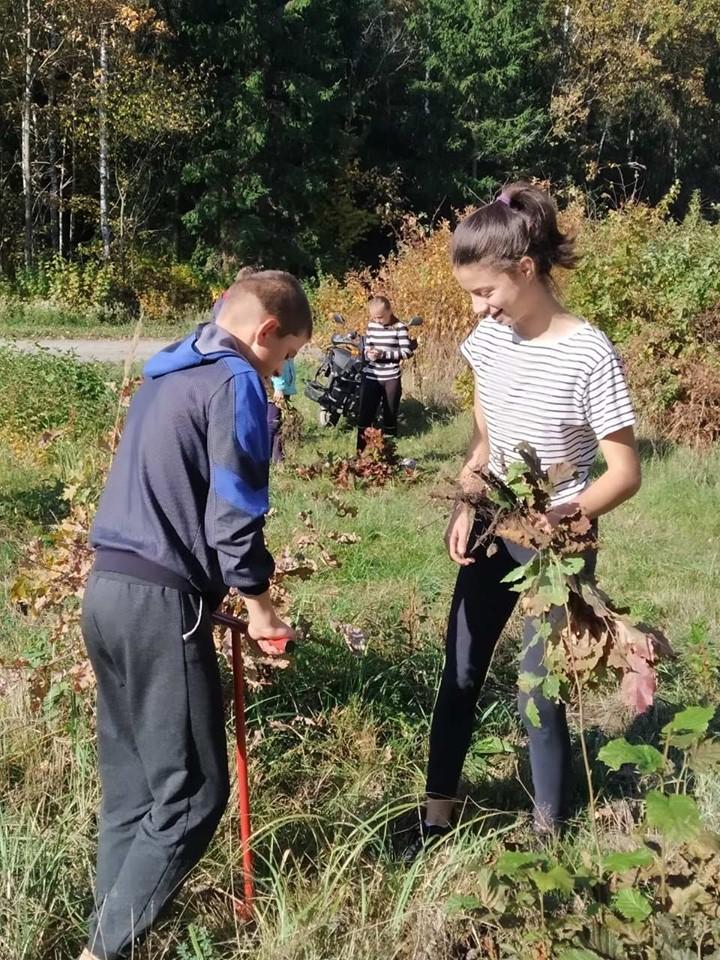 На Волині учні шкільного лісництва посадили в лісі дві тисячі дубів