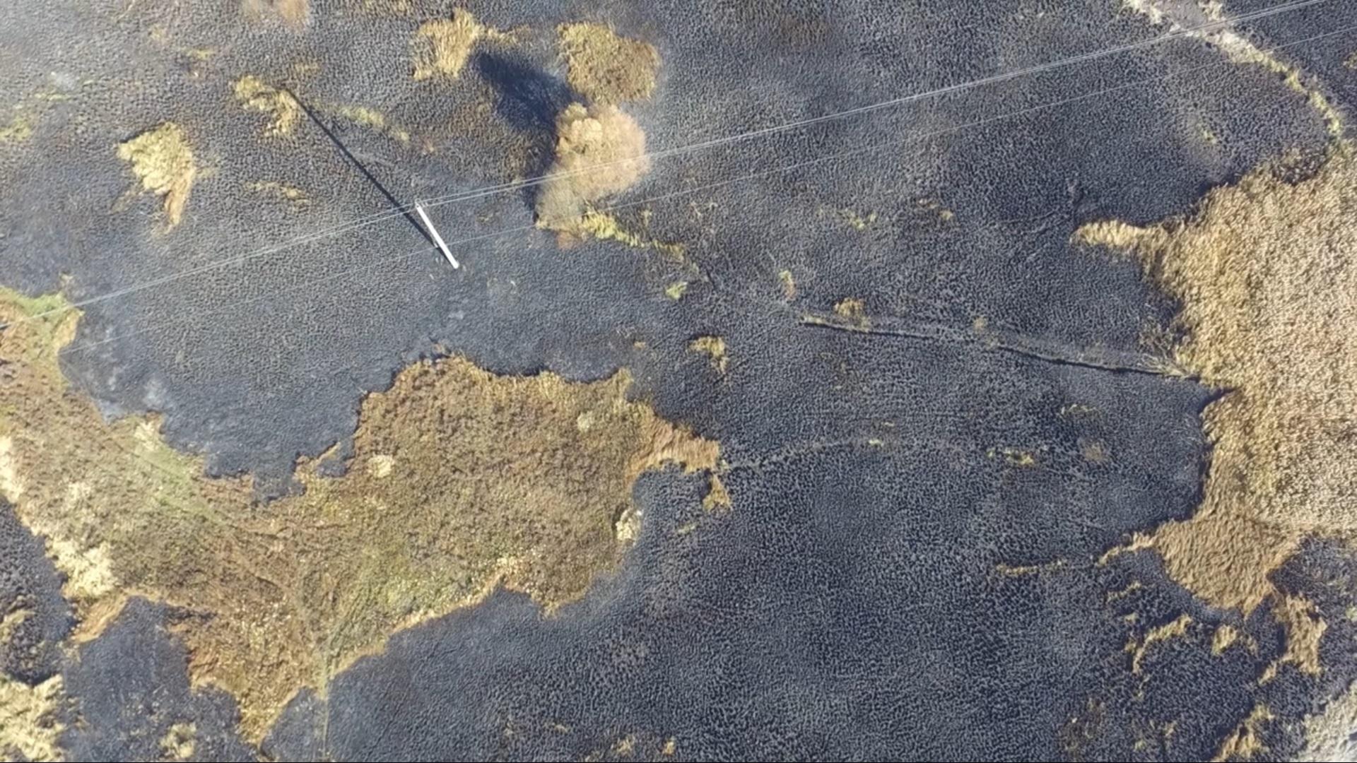 Показали, як вигоріла територія, під час пожежі очерету на Волині. ВІДЕО