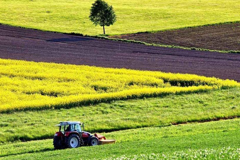 Скільки гектарів землі передали у власність об'єднаним територіальним громадам Волині