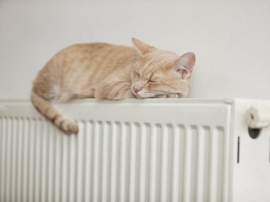У Луцьку подали тепло уже до 603 житлових будинків