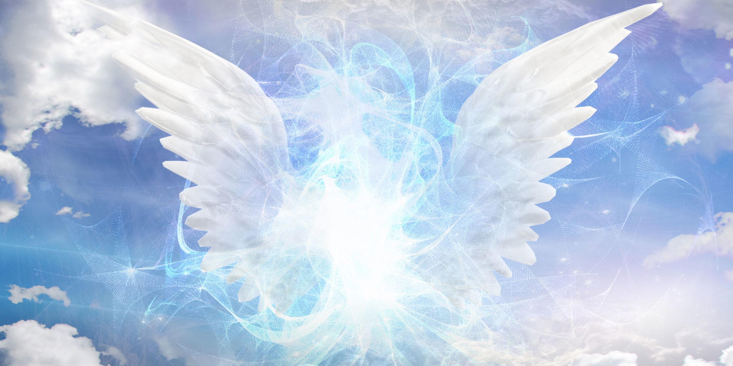 У митрополит Михаїла – День ангела