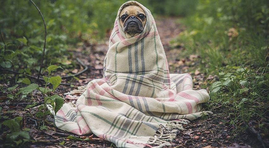 В Україну йде похолодання