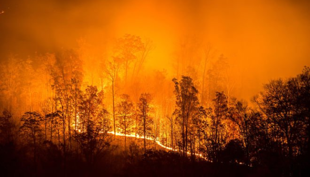 ЄС відрядив до Лівану літаки для боротьби з лісовими пожежами