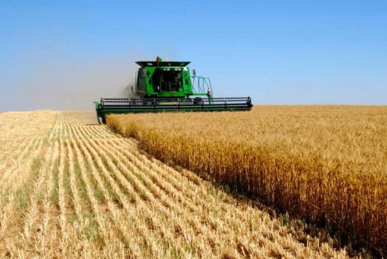 Стан сільського господарства у Луцькому районі у січні–вересні