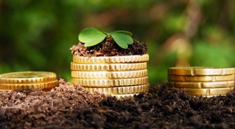 На Волині до місцевих бюджетів сплатили 322,5 мільйона гривень плати за землю