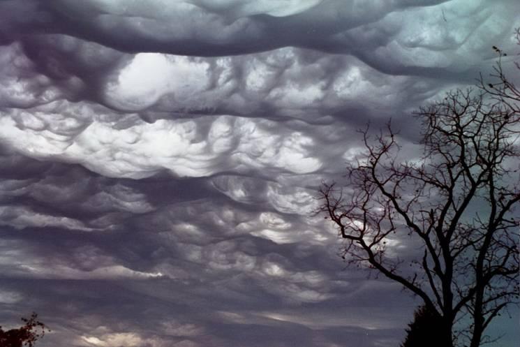 Погода у Луцьку завтра, 25 листопада