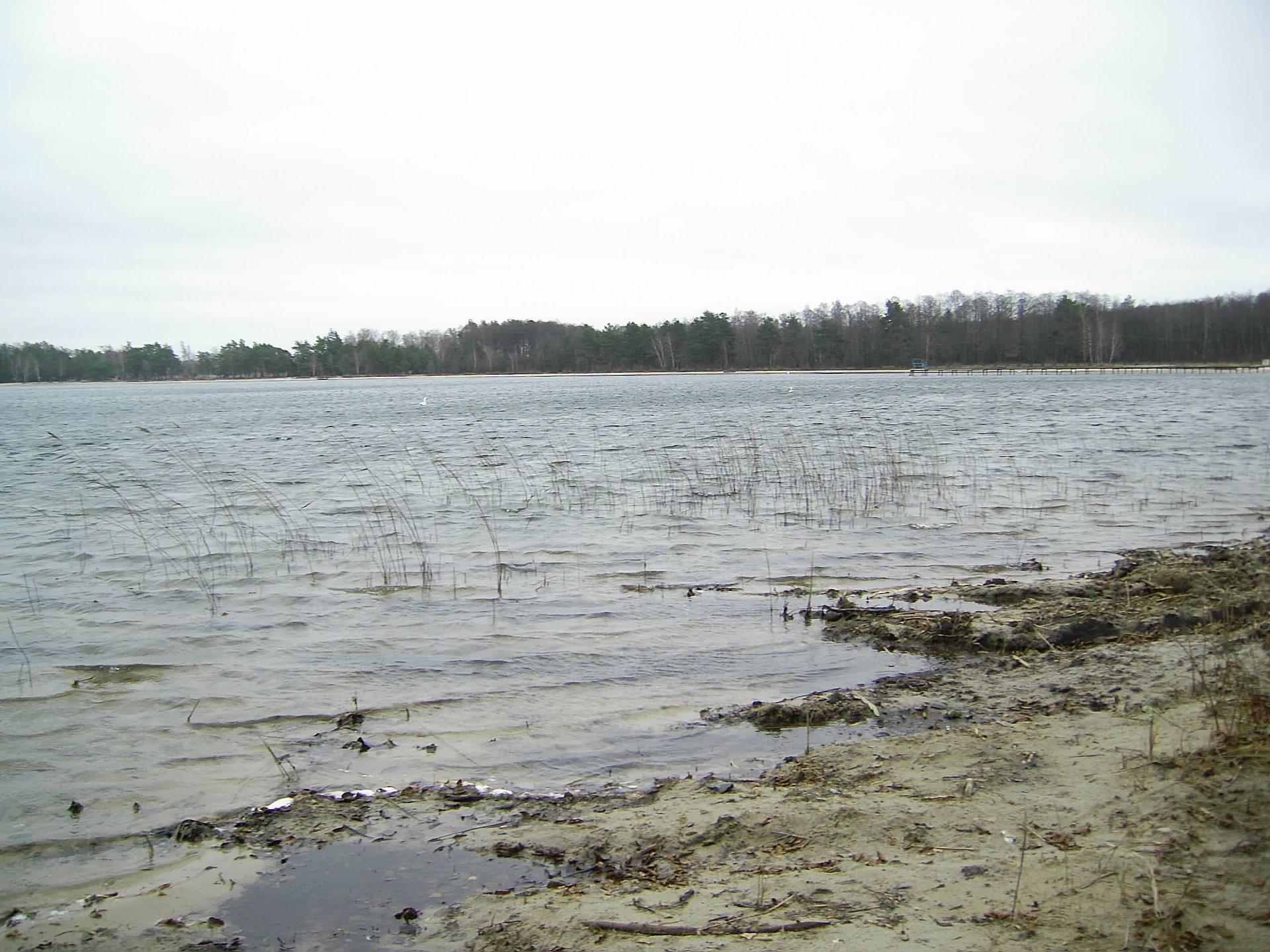 На Волині взяли проби води з озер
