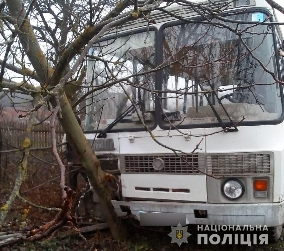 На Волині шкільний автобус в'їхав у дерева