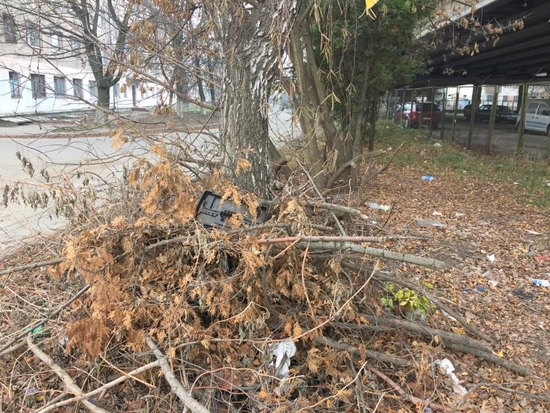 У Луцьку працівники автостоянки склали сміття посеред вулиці