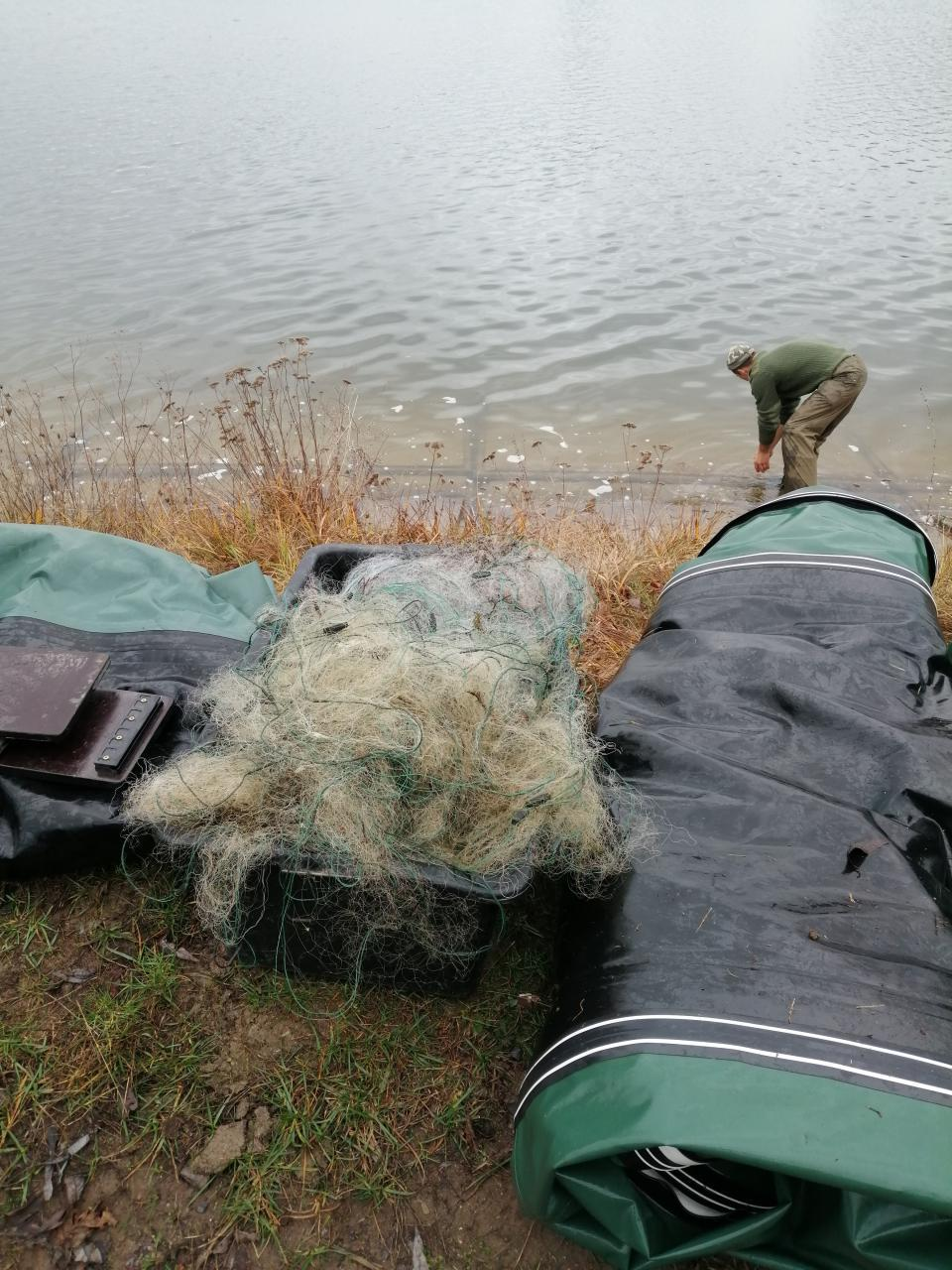 За тиждень на Волині зафіксували 23 порушення природоохоронного законодавства
