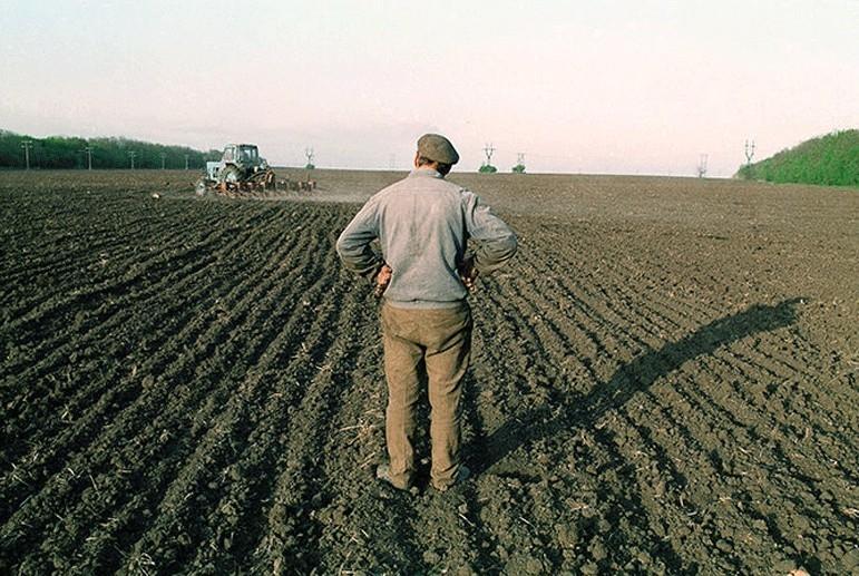 На Волині запрацює електронний фермерський реєстр