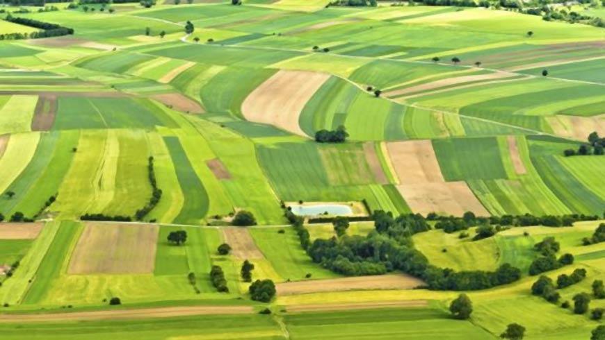 На Волині оновили перелік земельних ділянок, право оренди на які пропонуватимуть на земельних аукціонах